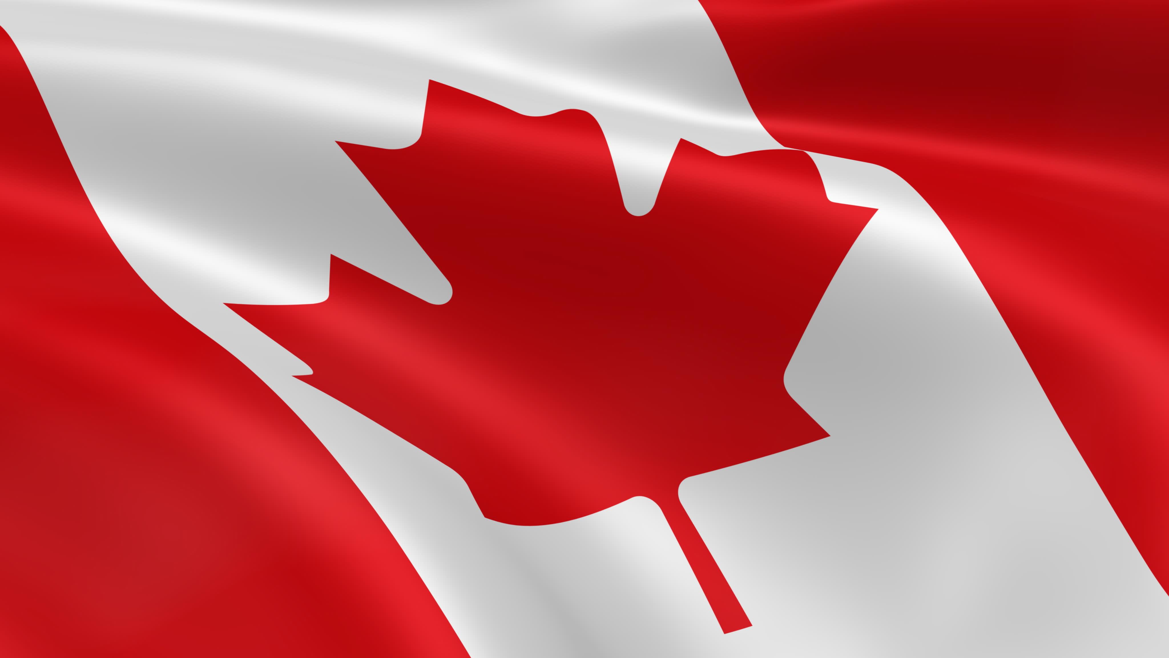 Канадская Иммиграционная Компания в Беларуси